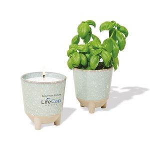 Modern Sprout� Glow & Grow Live Well Gift Set - Blue Green: Herb Garden w- Basil Seeds